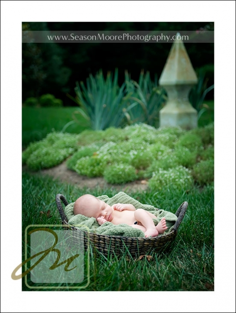 newborn-in-basket-outside