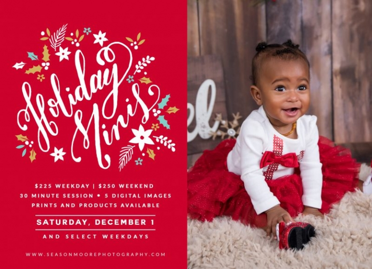 holiday mini session raleigh north carolina